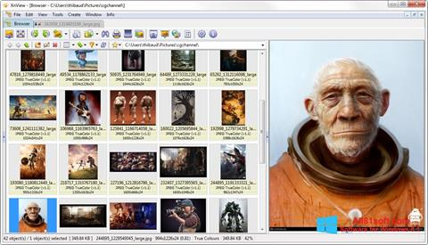 Captură de ecran XnView pentru Windows 8.1