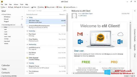 Captură de ecran eM Client pentru Windows 8.1