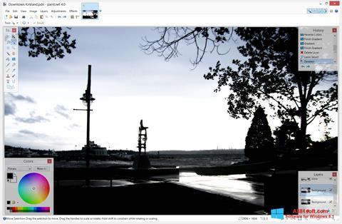 Captură de ecran Paint.NET pentru Windows 8.1