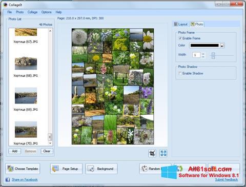 Captură de ecran CollageIt pentru Windows 8.1