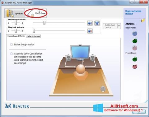 Captură de ecran Realtek Audio Driver pentru Windows 8.1