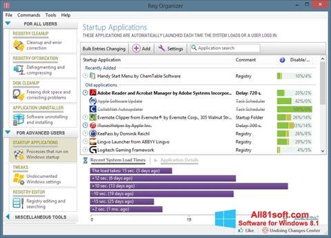 Captură de ecran Reg Organizer pentru Windows 8.1