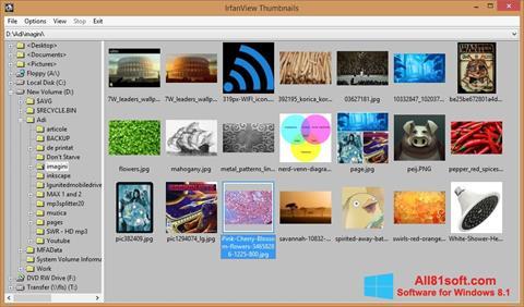 Captură de ecran IrfanView pentru Windows 8.1