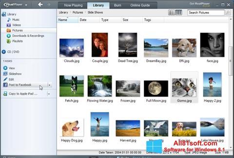 Captură de ecran RealPlayer pentru Windows 8.1